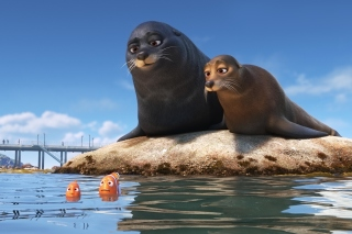 Finding Dory with Fish and Seal - Obrázkek zdarma pro Widescreen Desktop PC 1600x900