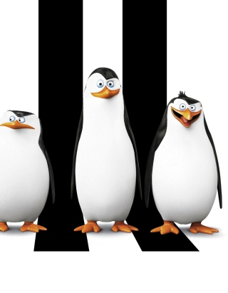 Penguins Madagascar - Obrázkek zdarma pro Nokia 206 Asha