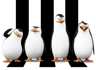 Penguins Madagascar - Obrázkek zdarma pro HTC Hero