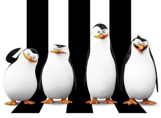 Penguins Madagascar - Obrázkek zdarma pro LG P500 Optimus One