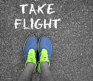 Take Flight - Obrázkek zdarma pro iPad 3