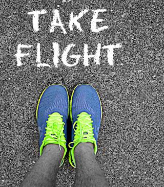 Take Flight - Obrázkek zdarma pro Nokia X3