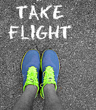Take Flight - Obrázkek zdarma pro 132x176