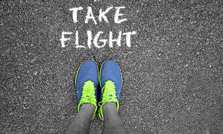 Take Flight - Obrázkek zdarma pro LG P970 Optimus