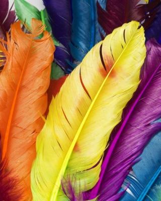 Colorful Feathers - Obrázkek zdarma pro 640x1136