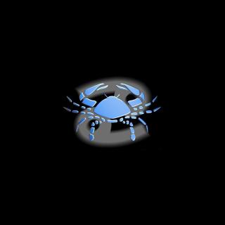 Cancer - Obrázkek zdarma pro iPad mini 2
