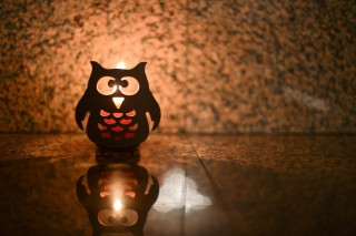 Owl Candle Wallpaper for Android, iPhone and iPad