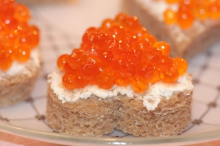 Free Wild Salmon Caviar Picture for Android, iPhone and iPad
