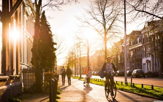 Spring Utrecht Background for Android, iPhone and iPad