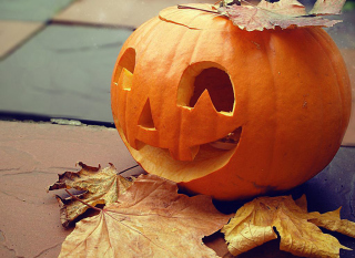 Free Smiling Pumpkin Picture for Android, iPhone and iPad
