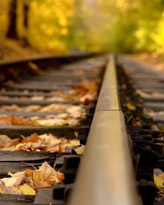 Railway tracks in autumn - Obrázkek zdarma pro Nokia C5-03