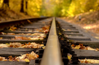 Railway tracks in autumn - Obrázkek zdarma pro Widescreen Desktop PC 1920x1080 Full HD