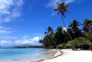 Cook Islands Background for Android, iPhone and iPad