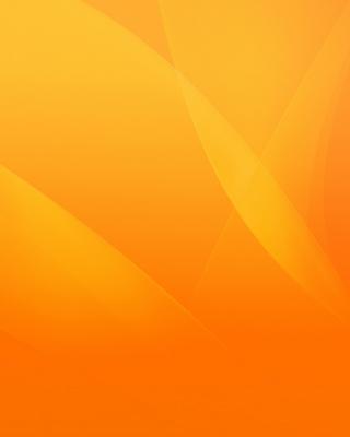 Warm orange petals - Obrázkek zdarma pro 360x400