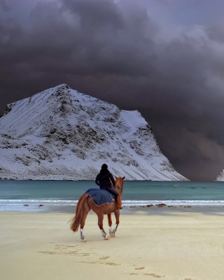 Horse on beach - Obrázkek zdarma pro 176x220