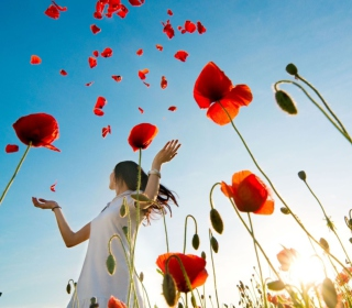 Girl In Poppies - Obrázkek zdarma pro iPad Air