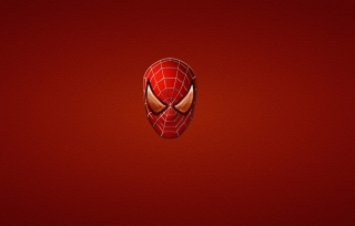 Spider Man - Obrázkek zdarma pro 220x176