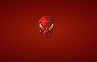 Spider Man - Obrázkek zdarma pro Samsung Galaxy Tab 3