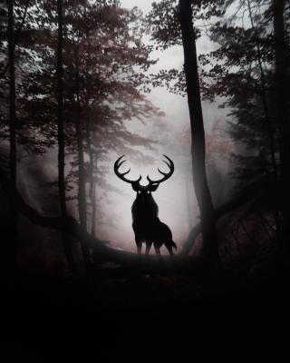 Deer In Dark Forest - Obrázkek zdarma pro Nokia Asha 300