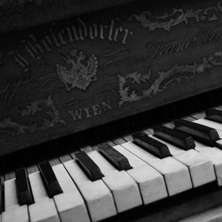 Vienna Piano - Obrázkek zdarma pro 208x208