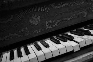 Vienna Piano - Obrázkek zdarma pro Samsung Google Nexus S 4G