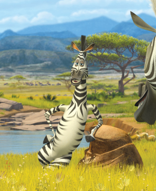 Zebra From Madagascar - Obrázkek zdarma pro Nokia Asha 303
