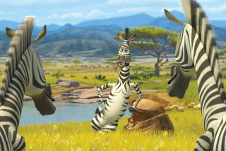 Zebra From Madagascar - Obrázkek zdarma pro 1024x600