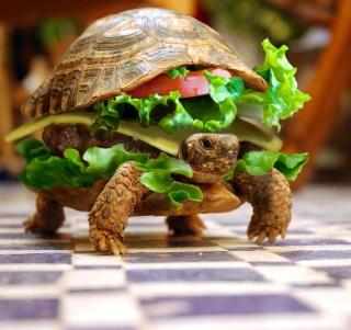 Turtle Burger - Obrázkek zdarma pro 128x128