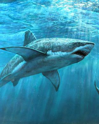 Shark Teeth - Obrázkek zdarma pro iPhone 5C