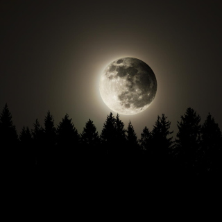 Full Moon Time - Obrázkek zdarma pro iPad Air