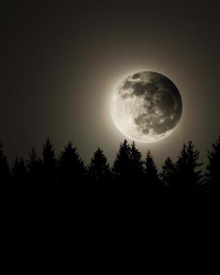 Full Moon Time - Obrázkek zdarma pro 240x400