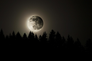 Full Moon Time Wallpaper for Android, iPhone and iPad