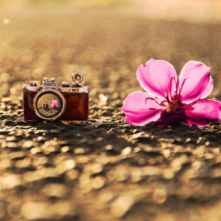Macro Camera and Flower - Obrázkek zdarma pro iPad mini