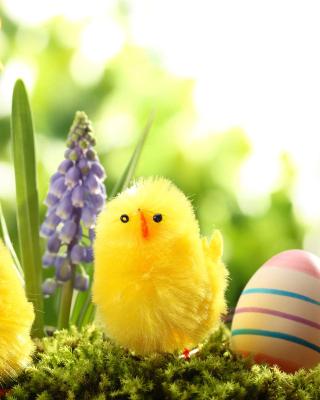 Easter Eggs and Hen - Obrázkek zdarma pro 360x400