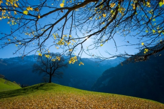 Autumn Schachental Switzerland Picture for Android, iPhone and iPad
