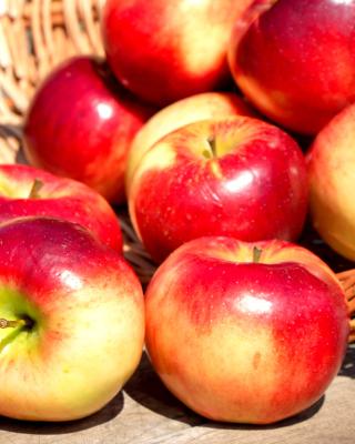Autumn Apples - Obrázkek zdarma pro iPhone 5C