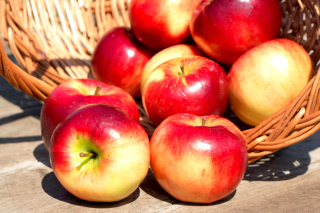 Free Autumn Apples Picture for Android, iPhone and iPad