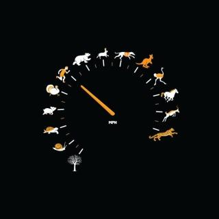 Funny Speedometer Mph - Obrázkek zdarma pro 2048x2048