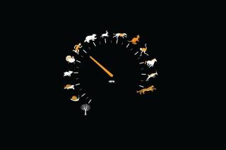 Funny Speedometer Mph - Obrázkek zdarma pro Sony Xperia Z1