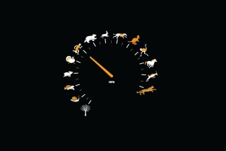 Funny Speedometer Mph - Obrázkek zdarma pro 220x176
