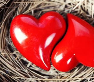 Heart In Nest - Obrázkek zdarma pro 128x128