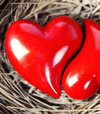 Heart In Nest - Obrázkek zdarma pro Nokia C1-02