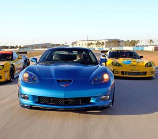 Corvette Racing Cars - Obrázkek zdarma pro 208x208