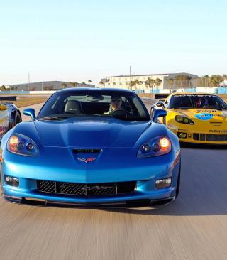 Corvette Racing Cars - Obrázkek zdarma pro 240x432