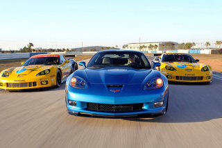 Corvette Racing Cars - Obrázkek zdarma pro Widescreen Desktop PC 1600x900
