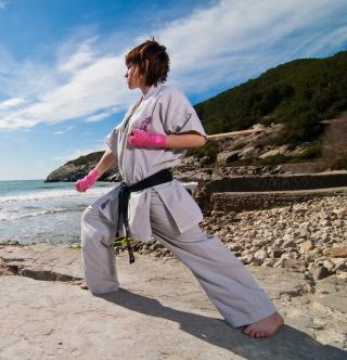 Karate By Sea - Obrázkek zdarma pro iPad 2