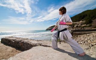 Karate By Sea - Obrázkek zdarma pro Nokia Asha 210