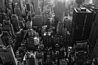Free New York City Black And White Skyscrapers Picture for Android, iPhone and iPad