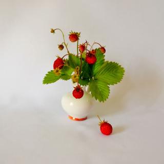 Wild Strawberrie - Obrázkek zdarma pro iPad Air