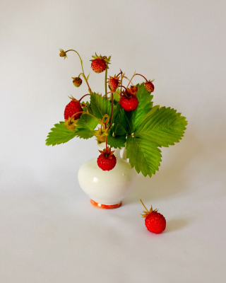 Wild Strawberrie - Obrázkek zdarma pro 360x480
